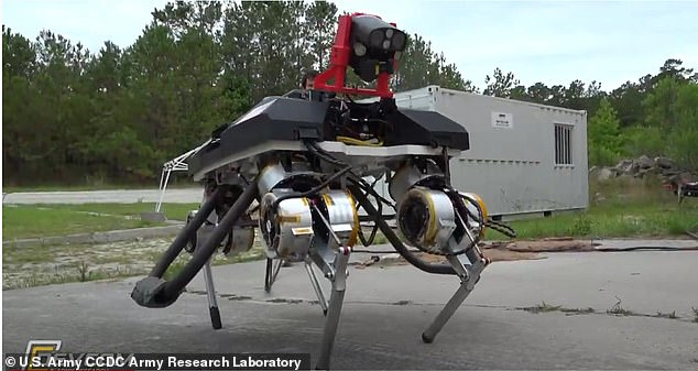 The US military group is working on a series of 'biohybrid robotics' that integrates living organisms into mechanical systems that 'produces never-seen-before agility and versatile.' The group is focusing on legged robots likethe Army's Legged Locomotion and Movement Adaptation research platform, known as LLAMA (pictured)