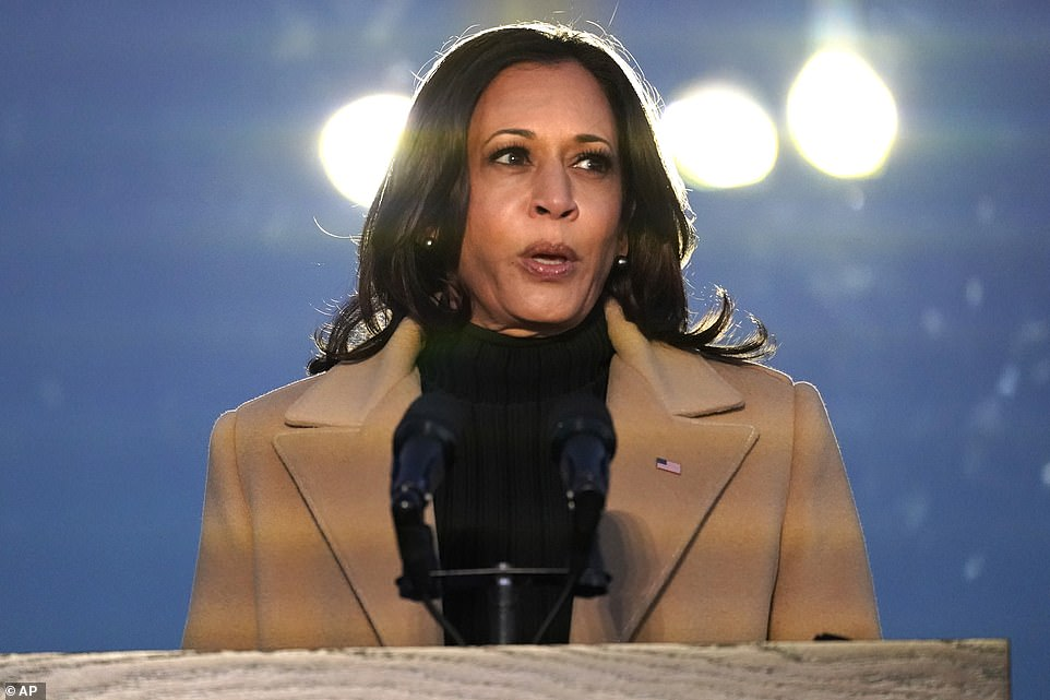 Harris also offered her own remarks, in which she insisted the American people are 'united in spirit' as they gathered to mourn lost loved ones across the nation
