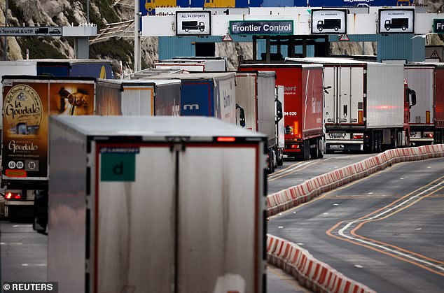 Lorries queue in at the border control of the Port of Dover on Friday. Traders stockpiled goods on both sides of the Channel before Jan. 1 but now supplies are dwindling, around 2,000 per day were crossing in the week to Jan. 10 - the normal level is 6,000 - and it will quickly rise back to that figure in the coming days