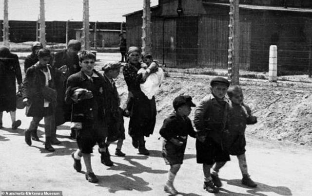 Their faces etched with fear, Jewish children and mothers carrying toddlers walk unknowingly to their horrendous fate. The above victims, from Hungary, were among 1.1million people murdered by the Nazis at the Auschwitz-Birkenau camp between 1942 and late 1944. Of those, 400,000 Hungarian Jews were murdered in the space of less than three months in the summer of 1944, the above women and children among them. They are pictured walking to the gas chambers