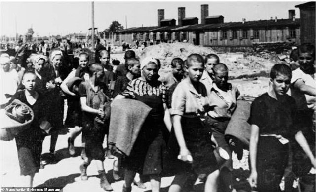 After their showers, the prisoners were taken to their designated barracks with a blanket for their bunk. The women had lost the last symbols of their individuality. They now all looked alike