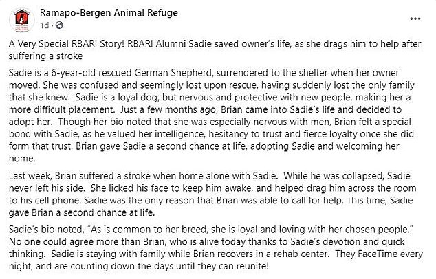 Man's best friend! The story of Sadie's heroics was shared on the Facebook page of the animal refuge that Brian rescued her from, where it quickly went viral