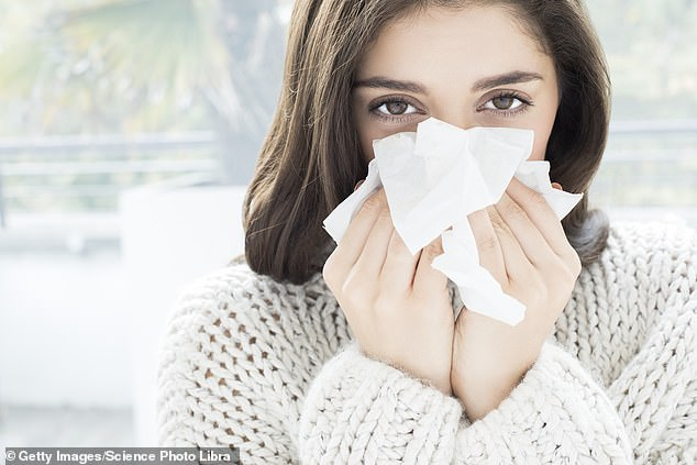 A group of 140 GPs have written to Prof Chris Whitty asking that a runny nose should be included on the official list of symptoms as many Covid-19 patients are initially presenting with signs of a common cold, picture posed by model