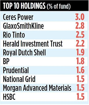 The trust invests in traditional income stocks, but also in some 'zero yielders'