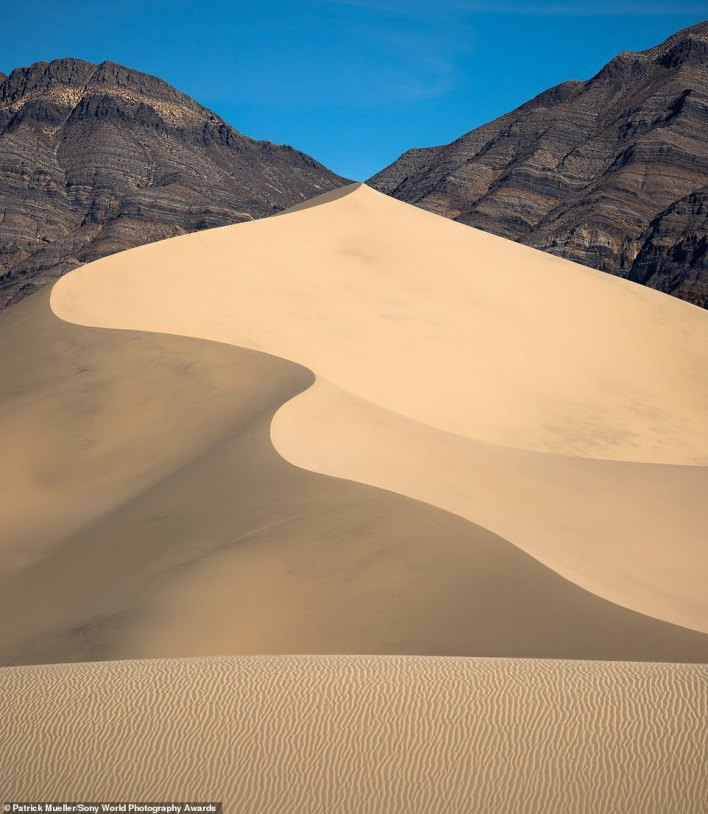 This striking image of a 'snaking dune' in Death Valley meeting the surrounding mountains was snapped by Patrick Mueller - the winner of the national award for the USA