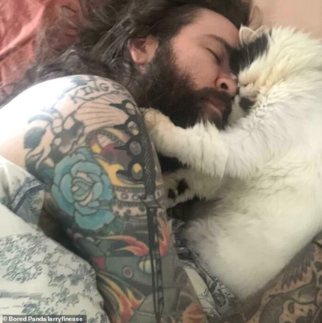 One user, from an unknown location, wakes up curled up with their girlfriend's cat every morning after the cat decided 'he is obsessed' with them