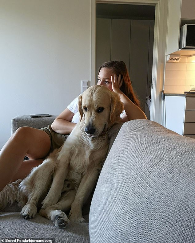 One social media user, believed to be from Sweden, said their dog was 'stealing' their girlfriend, as they shared a snap of the dog, who appeared to be grinning at the camera, curled up on the sofa next to her
