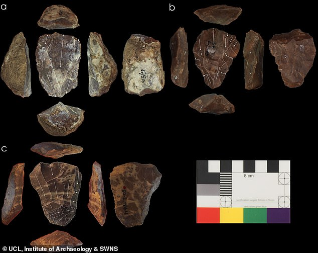 Photos of Nubian Levallois cores associated with Neanderthal fossils.This is the first time they've been found in direct association with Neanderthal fossils, which suggests we can't make a simple link between this technology and Homo sapiens