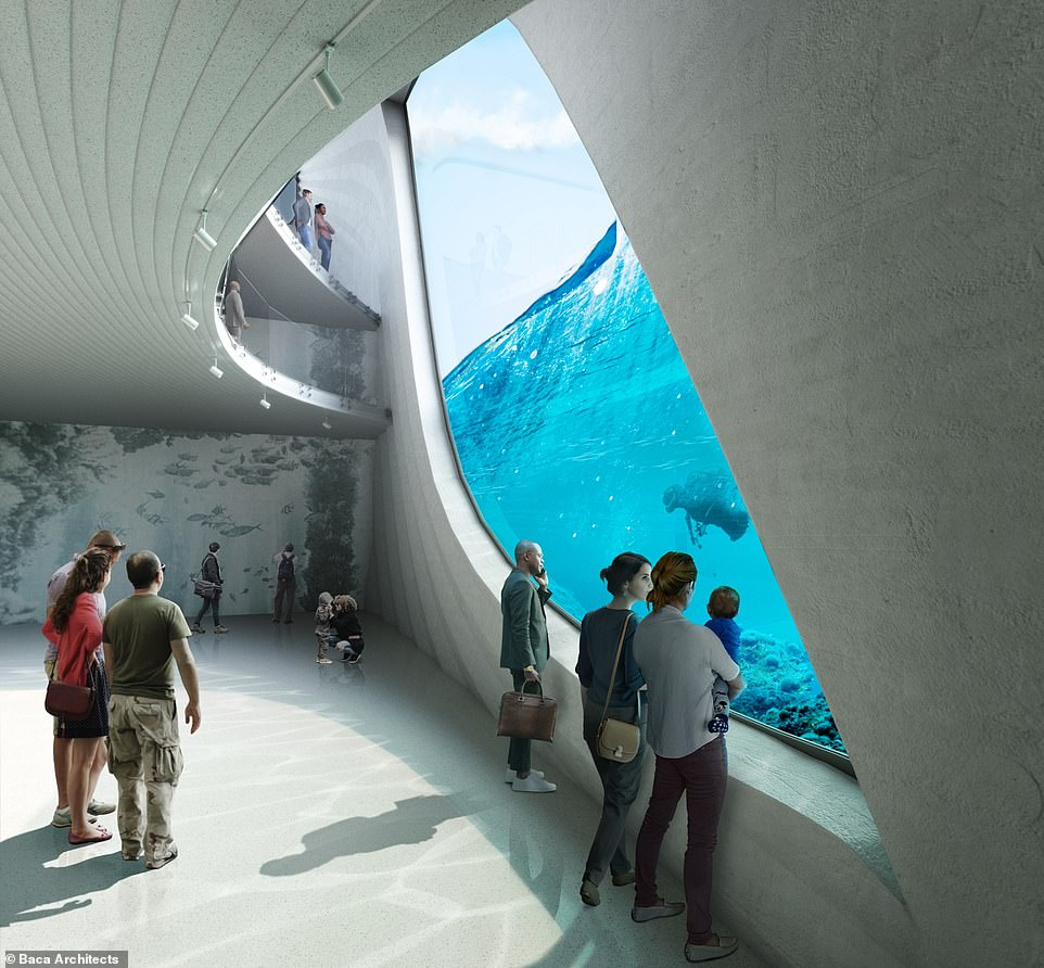 Visitors will be able to peer through huge windows to admire the unique underwater ecosystem where 'the cold waters of the Southern Ocean meet the warm waters of the Indian Ocean'