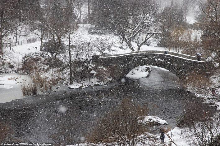 MANHATTAN, NEW YORK: Snow is seen falling in Manhattan's Central Park on Thursday