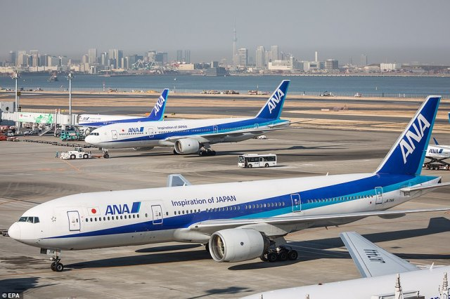 Grounded: Aircraft belonging to All Nippon Airways, a Japanese carrier which uses the same Pratt & Whitney engines on board its Boeing 777s, are seen in a file photo at Tokyo's Haneda Airport