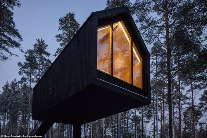 Finnish firm Studio Puisto, which designed the cabin, says raising the accommodation means there is minimal contact 'with the nature below' and the cabin is 'strategically positioned so that only a few trees needed to be taken down during construction'