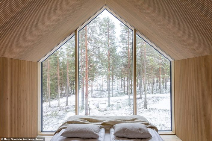 The cabin'sstandout feature is the full-length window, which Studio Puisto says provides an unobstructed view of the surrounding nature