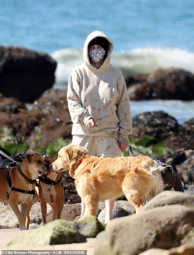 Mutt and greet: Billie hid her signature fluorescent green roots under a black knit hat and hood and donned a mask when around others while her dogs made friends.