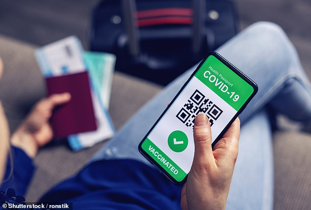 Holidaymakers could be offered a phone app ¿within weeks¿ that would enable them to prove they have tested negative for Covid or been vaccinated (example of a travel passport phone app)