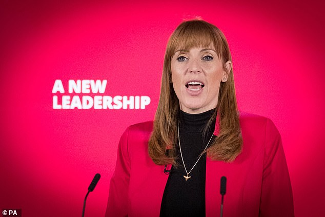 Tweeting twaddle: For all its faults Serco does not deserve to be traduced by Labour's deputy leader Angela Rayner (pictured)