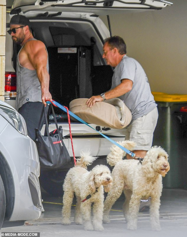 Dog days: The couple, their three children and their two pampered dogs all landed at Sydney Airport at the private jet terminal on Saturday, after flying from Bryon Bay.
