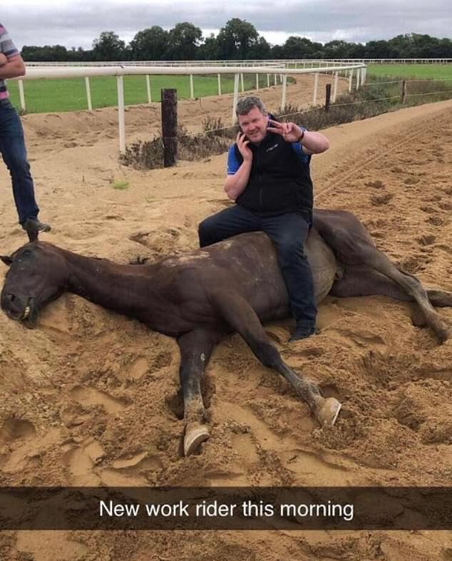 Gordon Elliott was slapped with a one-year suspension,with six months suspended,after a picture of him sitting on a dead horse