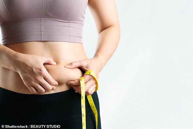 A new study has found stomach blubber is the hardest of all forms of body fat to lose if adopting the diet technique of intermittent fasting. Scientists discovered belly fat is the most resistant due to a 'preservation mode' which allows it to stay put while fat around the rest of the body is burned (stock)