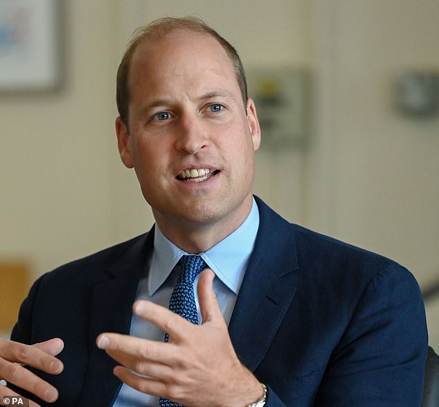 Prince William will display a united front with his brother when they unveil a statue in honour of their mother Princess Diana later this year