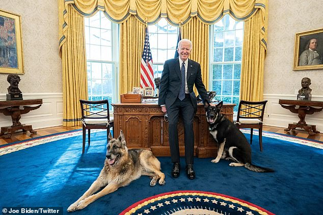 The White House defended President Joe Biden's two German Shepherds after the younger dog Major, being petted by President Biden, was reported to have bitten a security guard