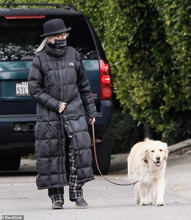 Diane's dog walk: Diane Keaton didn't risk the cold elements or falling COVID-19 rates on a dog walk on Monday