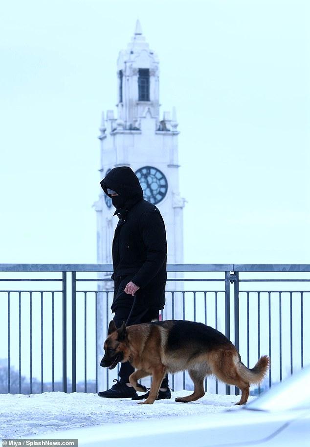 Aaron Rodgers Dog : aaron, rodgers, Aaron, Rodgers, Earns, Brownie, Points, Fiancee, Shailene, Woodley, Walks