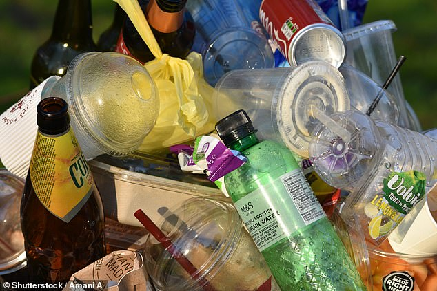 A deposit return scheme to encourage Britons to bring back bottles, cans and other containers has been put back until 2024 (stock image)