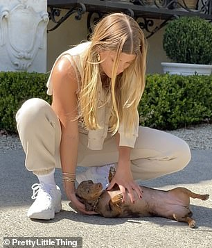 Cute: The young model is seen ticking the inquisitive pup's exposed stomach as it stretches out at her feet