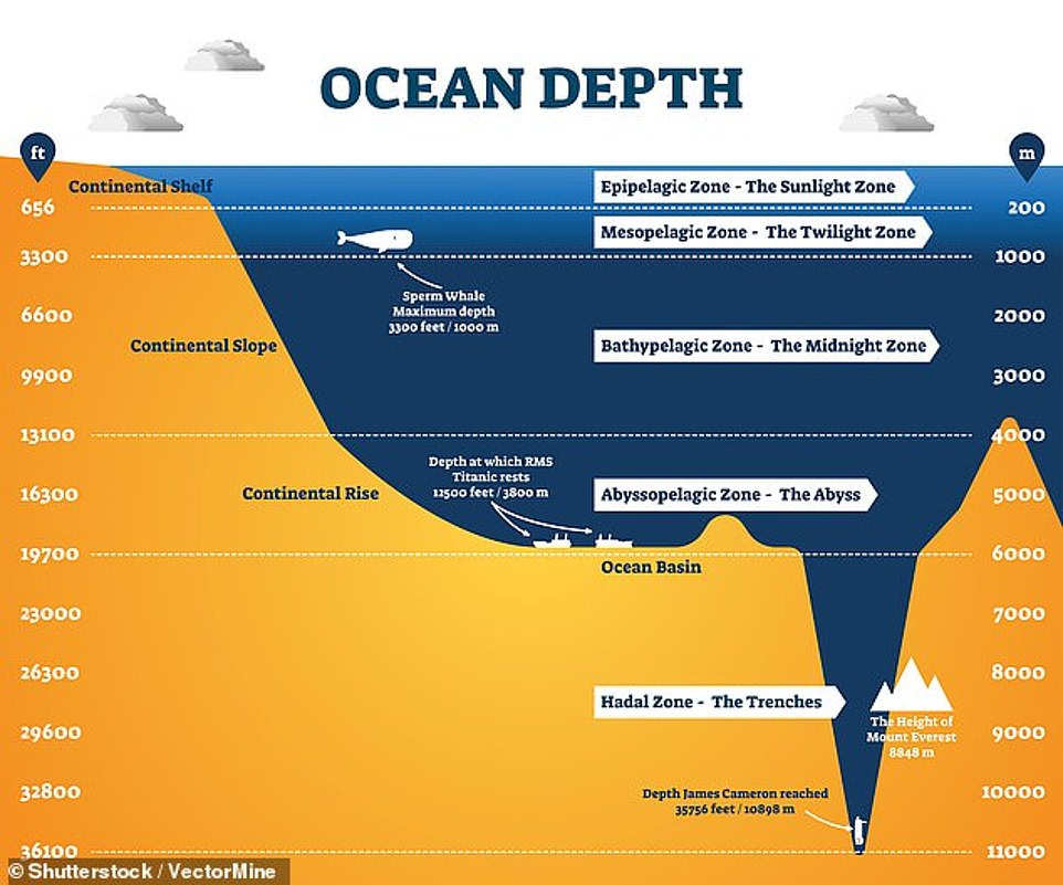 An infographic that illustrates the comparative depth of the Mariana Trench compared to the likes of Everest, the Titanic wreck and sperm whale dives