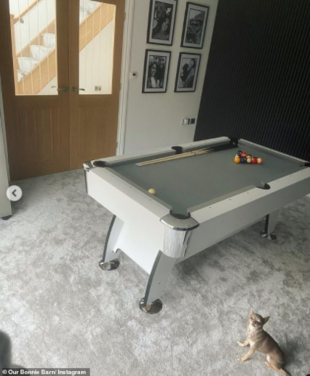 Details:'We¿ve got a pool table in here, a liberty games one, it¿s a six foot one so big enough for me. Size doesn¿t always matter'