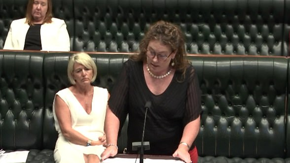 Trish Doyle(pictured in parliament last Wednesday afternoon) rocked NSW Parliament by claiming a male government MP allegedly raped a sex worker at a secluded bush lookout after paying her $200 for oral sex