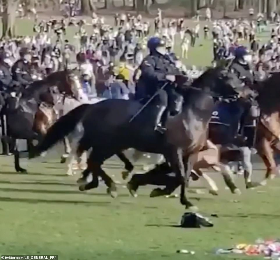 The woman was hit by the horse and sent crashing to the floor. Horrified onlookers rushed to help