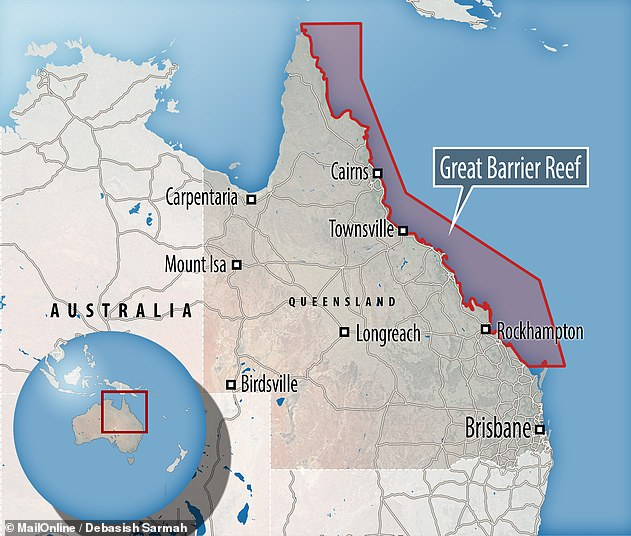 The Great Barrier Reef sits in the Coral Sea, located off the coast of Queensland and is home for more than 2,900 individual reefs