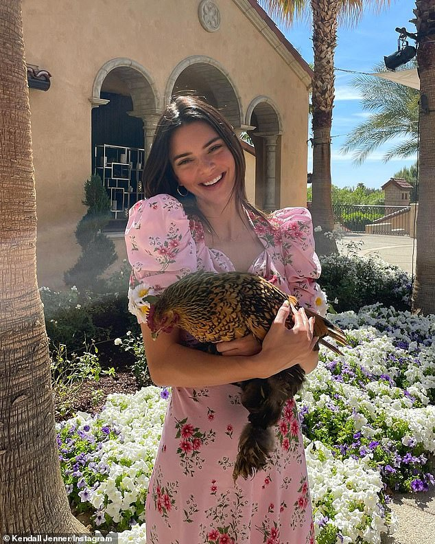 Ruffling feathers: The model, 25, hugged a live chicken in one snap from her Palm Springs vacation with the family