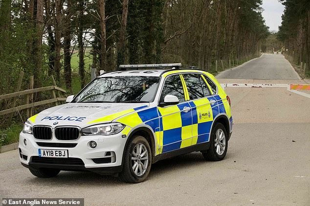 A police car waits at the scene after the two teenagers and a woman were injured by shotgun pellets