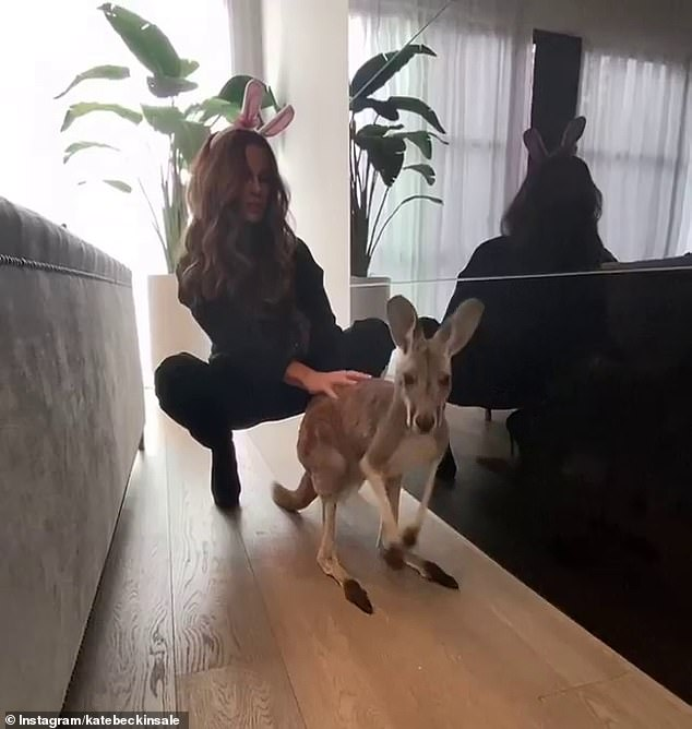 Not happy: Kate Beckinsale, 47, divided opinion among fans on Mondayfor posing next to kangaroos and other Australian wildlife inside a house in Canada