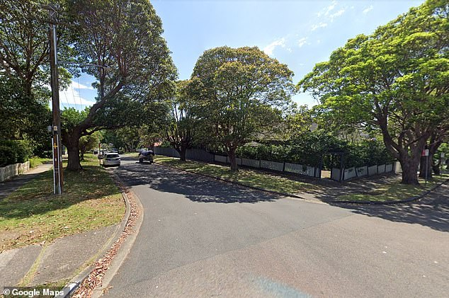 Emergency services were called to Smith Road (pictured) in Artarmon on Tuesday after a man was critically injured while trimming a hedge. He suffered a cardiac arrest at the scene