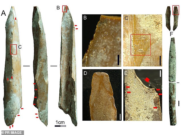 Ancient bone tools found in northern Western Australia are changing long-held scientific beliefs about Aboriginal culture