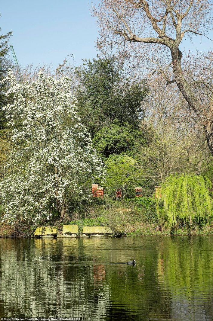 Over the years, many resident kings and queens have appreciated the garden's spring flowering shrubs and trees. Pictured: The stunning lake