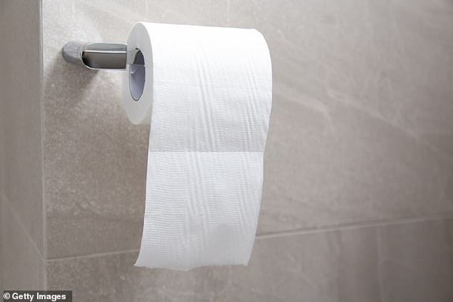 Another said they knew someone was rich as soon as they discovered that they had luxury toilet paper that was soft (stock image)