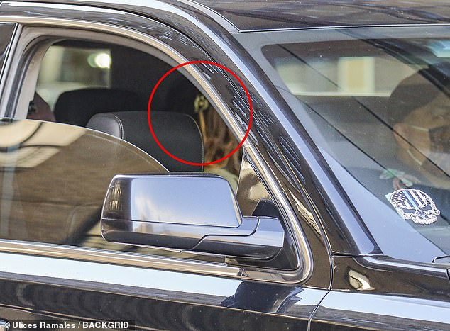 Lily waits: Depp (circled) was spotted hanging out in a vehicle while Chalamet was seen running errands with another friend
