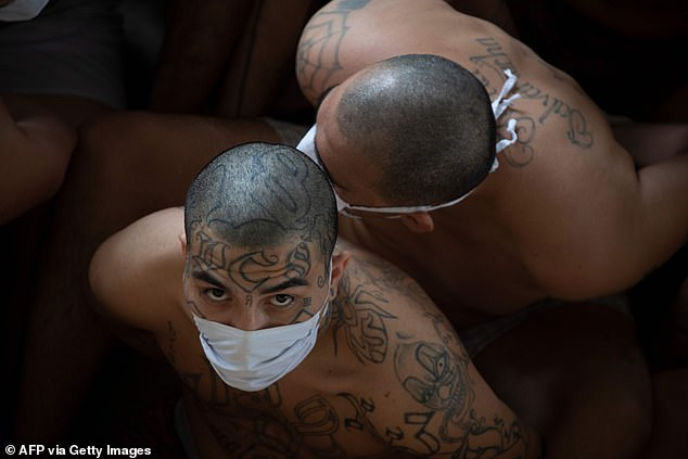 Members of the MS-13 gang are seen in prison in Izalco, El Salvador, in September 2020