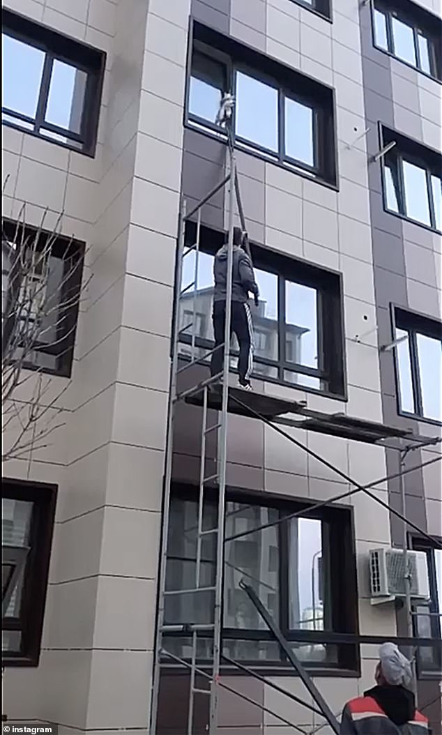 Using a long metal scaffold pole, the rescuers managed to lift the cat and push it inside the apartment