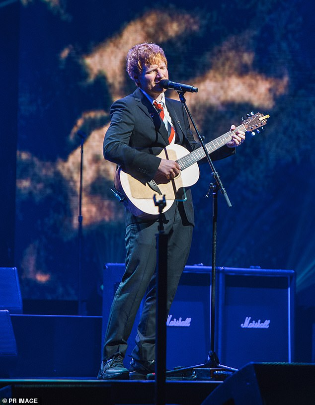 The song: In the lyrics to Visiting Hours, Sheeran says he wishes