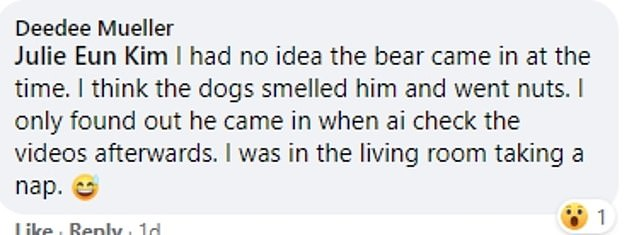 Ms Mueller was oblivious to the bear's visit until she reviewed the CCTV footage of her home