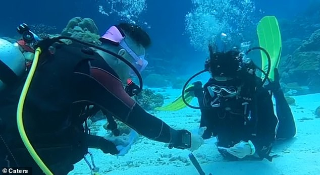 In video footage of the quirky engagement, Mattia is seen handing his loved one a laminated note asking if she wanted 'to be his dive buddy forever'