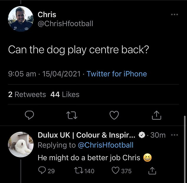 A fan asked if the brand's iconic dog could play center, which Dulux responded by saying he could probably do a `` better job '' than some of the club's current players.