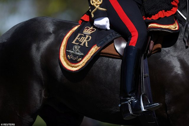 A member of The Kings Troop Royal Horse Artillery carrying Her Majesty's insignia on his saddle