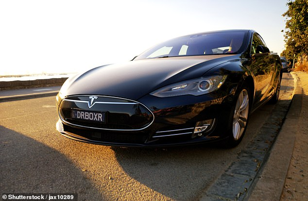 A file photo of a new Tesla 2019 Model S - the model that was involved in the crash